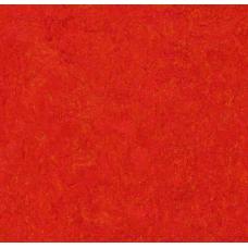 Мармолеум FORBO MARMOLEUM Real 3131 scarlet