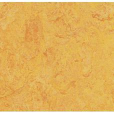 Мармолеум FORBO MARMOLEUM Real 3225 dandelion