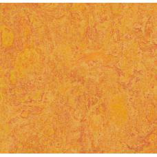 Мармолеум FORBO MARMOLEUM Real 3226 marigold