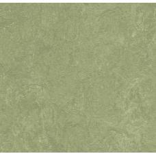 Мармолеум FORBO MARMOLEUM Real 3240 willow