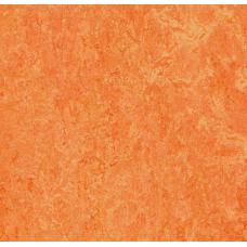 Мармолеум FORBO MARMOLEUM Real 3241 orange sorbet