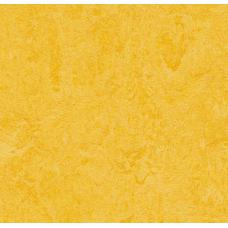 Мармолеум FORBO MARMOLEUM Real 3251 lemon zest